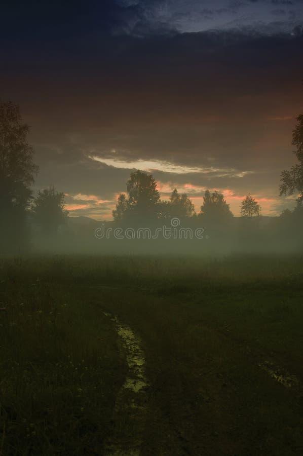 Zmierzch bagno Wieczór mgły, mgły horroru mistyczki krajobraz/ zdjęcie stock