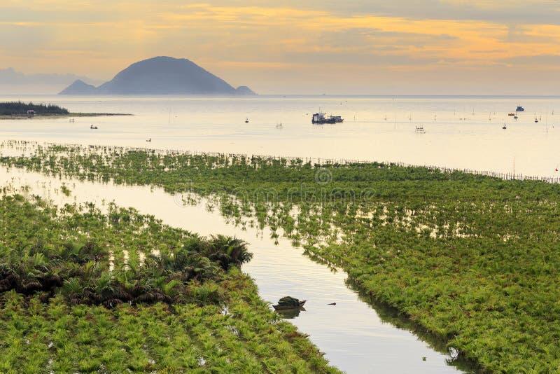 Zmierzch blisko Hoi dalej wybrzeże Wietnam fotografia stock