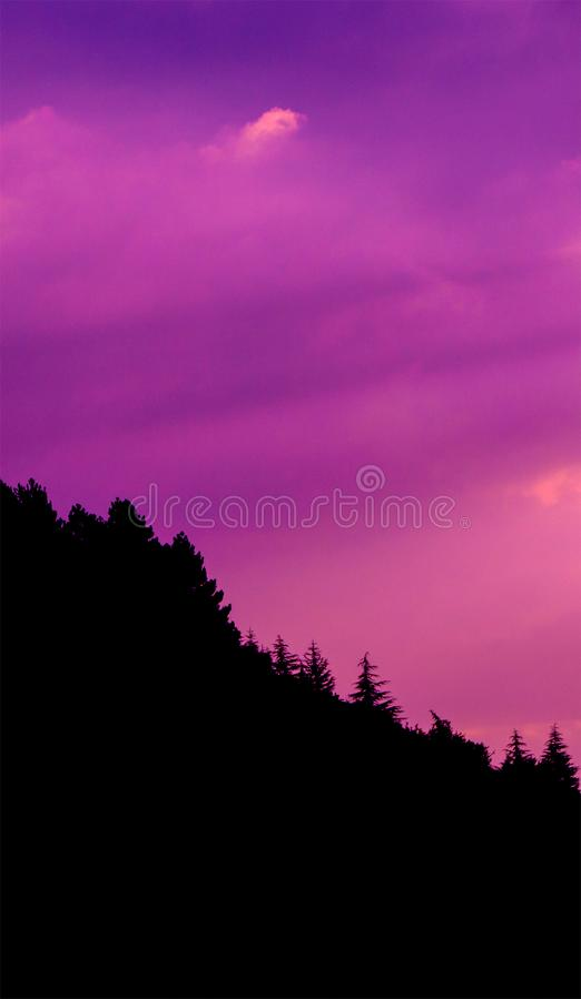 Zmierzch chmurnieje fotografię z sylwetką sosnowy las przy wzgórzem zdjęcia stock