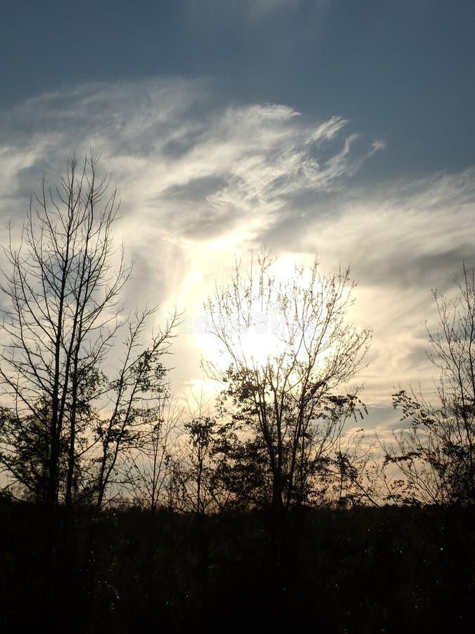 Zmierzch i chmury z nagimi drzewami zdjęcia royalty free