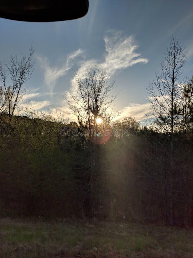 Zmierzch i chmury za drzewami obrazy royalty free