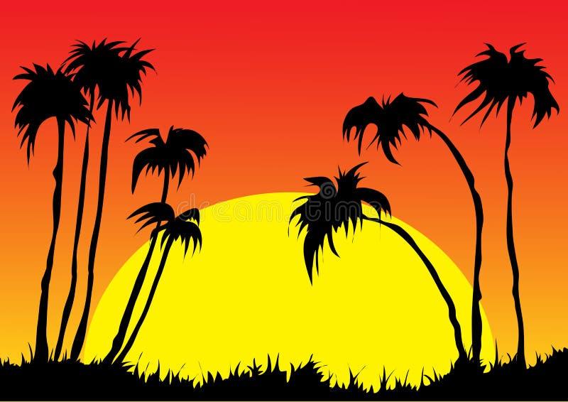 Zmierzch i tropikalni drzewka palmowe z kolorowym krajobrazowym tłem royalty ilustracja