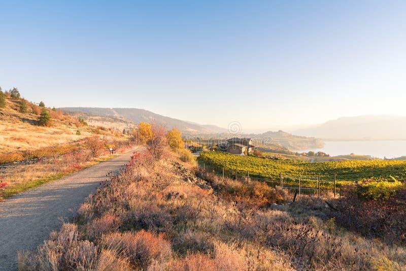 Zmierzch jesieni widok czajnik doliny poręcza ślad, winnicy, Okanagan jezioro i góry, fotografia stock