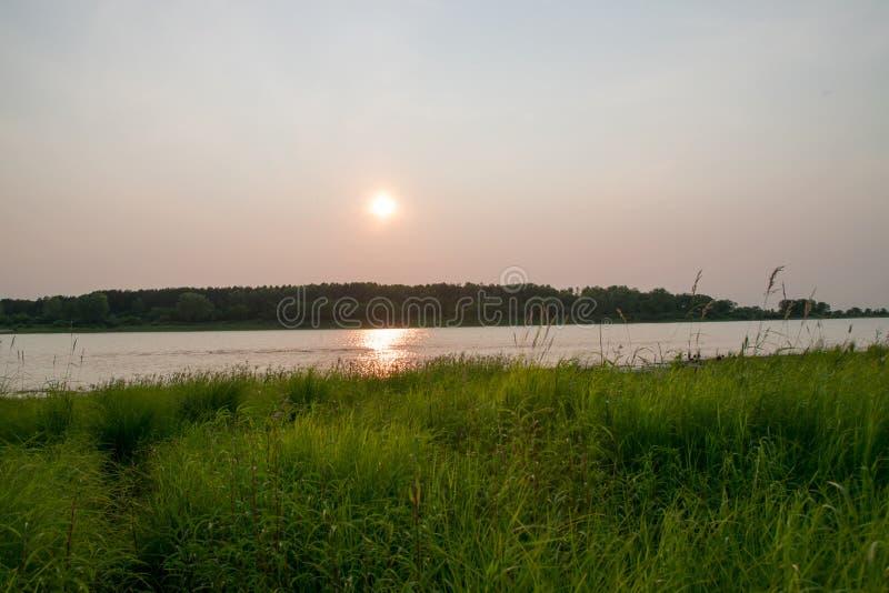 Zmierzch na jeziorze w lecie obraz stock