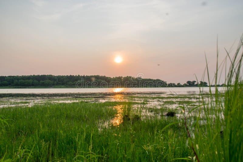 Zmierzch na jeziorze w lecie fotografia stock