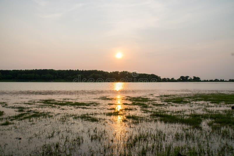 Zmierzch na jeziorze w lecie obraz royalty free