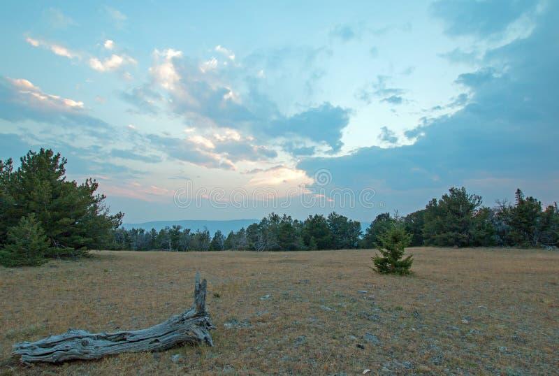 Zmierzch na nieboszczyku logował się Tillett grań w Pryor górach na Wyoming Montana granicie stanu - usa obraz royalty free