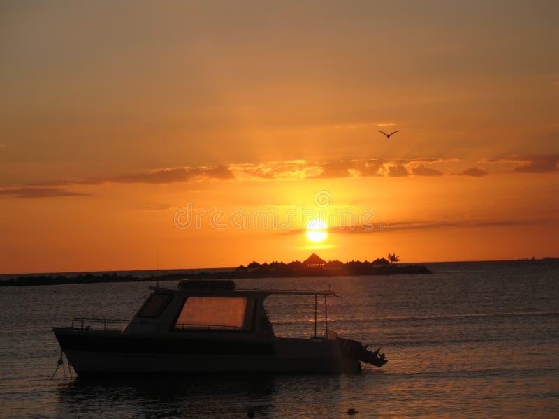 Zmierzch na plaży z łodzią, wyspą i seagull, obraz royalty free