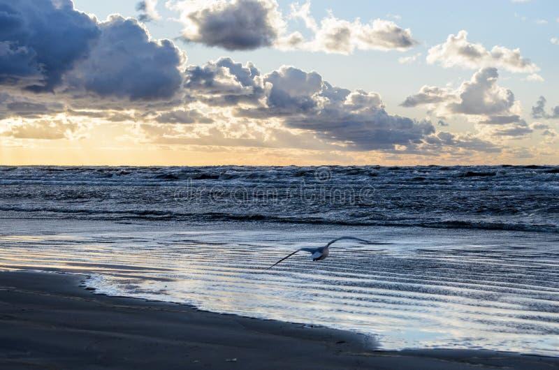 Zmierzch na pla?y z chmurnym niebem, morze ba?tyckie, Jurmala, Latvia obraz royalty free