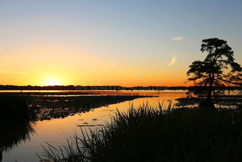 Zmierzch na Reelfoot jeziorze zdjęcia royalty free