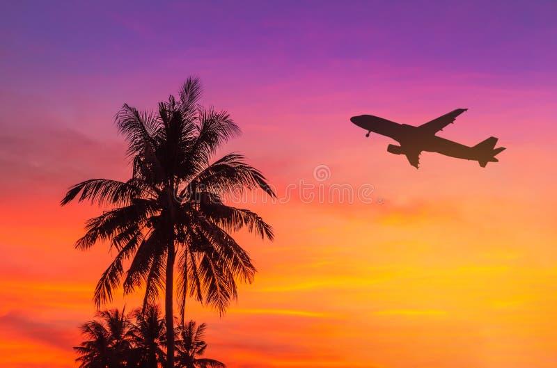 Zmierzch na tropikalnej plaży z kokosowymi drzewkami palmowymi podczas sylwetki samolotowego latania zdejmuje obrazy stock