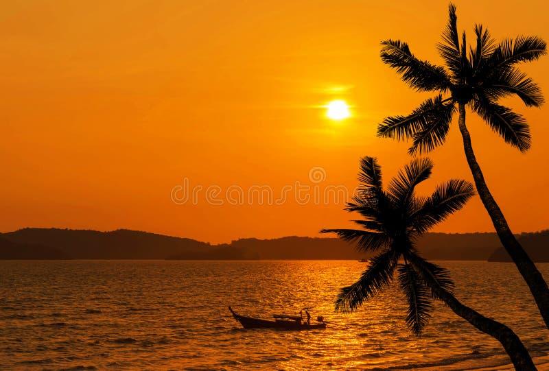 Zmierzch na tropikalnej plaży z silhoutte kokosowymi drzewkami palmowymi i silhoutte rybaka łodzią obraz royalty free