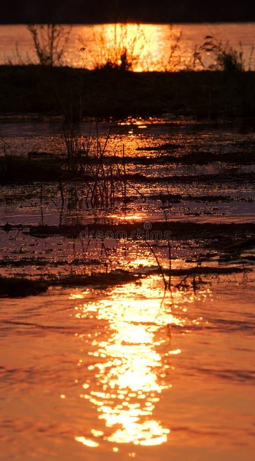 Zmierzch na Zambezi rzece africa Granica zambiowie i Zimbabwe fotografia royalty free