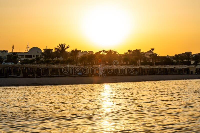 Zmierzch nad czerwonego morza drzewka palmowego silhuettes hotelowymi w Makadi zatoce Egipt zdjęcie royalty free
