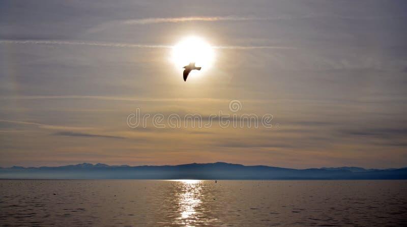 Zmierzch nad jeziornym ohrid, Macedonia zdjęcie stock