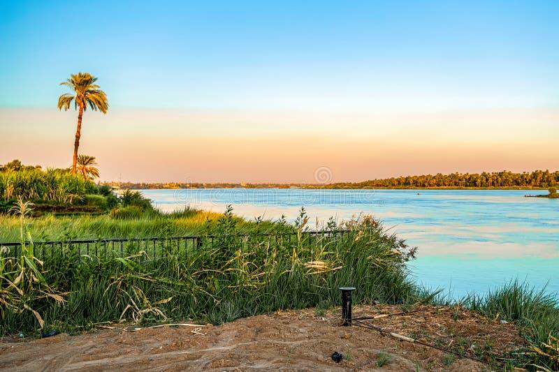 zmierzch nad Nile między zielonymi palmami i zdjęcia royalty free