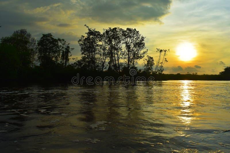 Zmierzch nad riverwith drzewami w Malaysia obraz stock