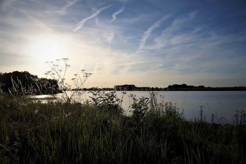 Zmierzch nad rzecznym Maas w Holandia fotografia stock