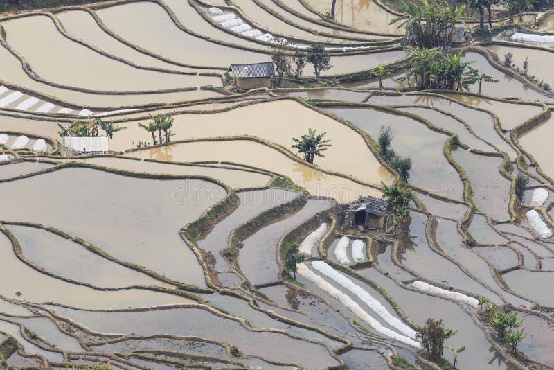 Zmierzch nad YuanYang ryż tarasuje w Yunnan, Chiny, jeden opóźneni UNESCO światowego dziedzictwa miejsca obraz stock