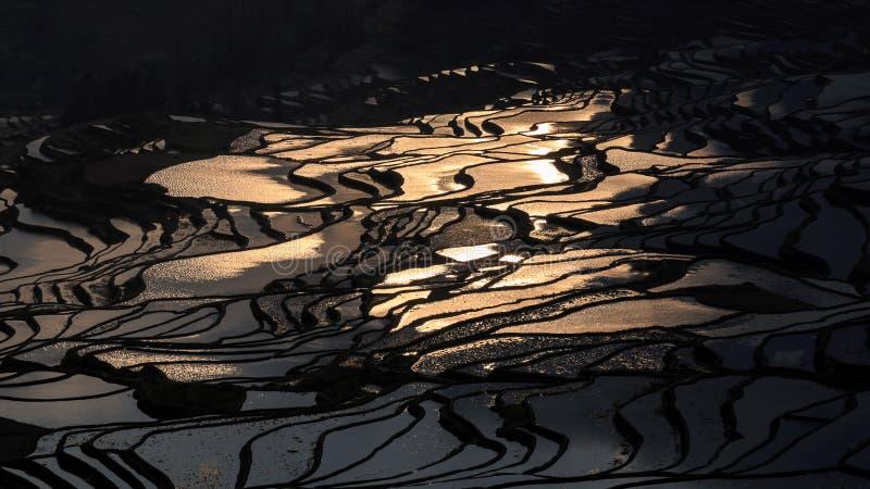 Zmierzch nad YuanYang ryż tarasuje w Yunnan, Chiny, jeden opóźneni UNESCO światowego dziedzictwa miejsca obraz royalty free