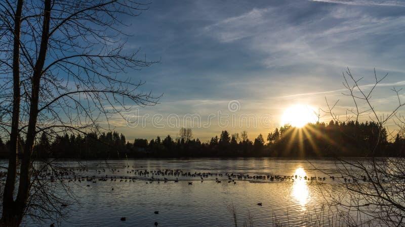 Zmierzch Nad Zamarzniętym jeziorem pod Jasnymi niebami obrazy royalty free
