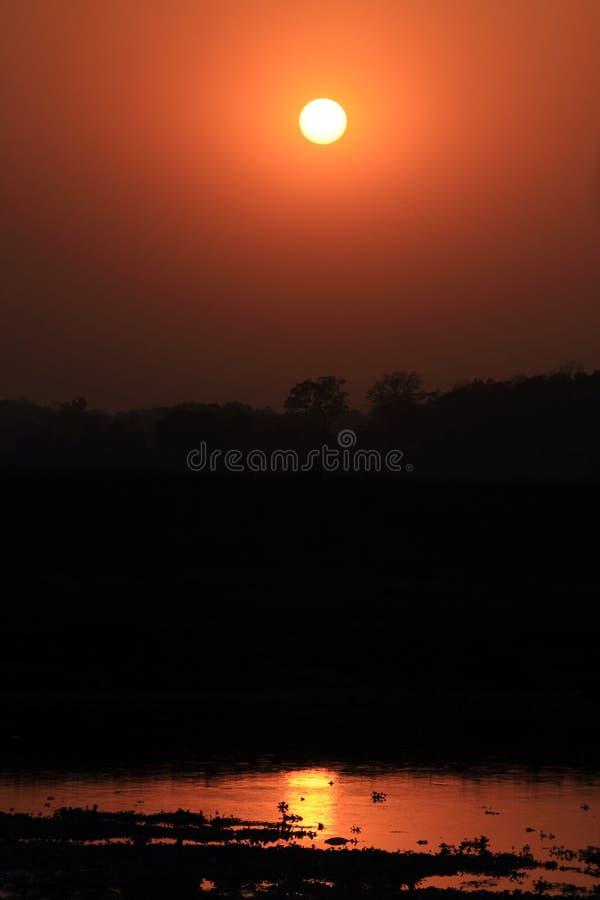 Zmierzch Nationalpark Chitwan obrazy royalty free