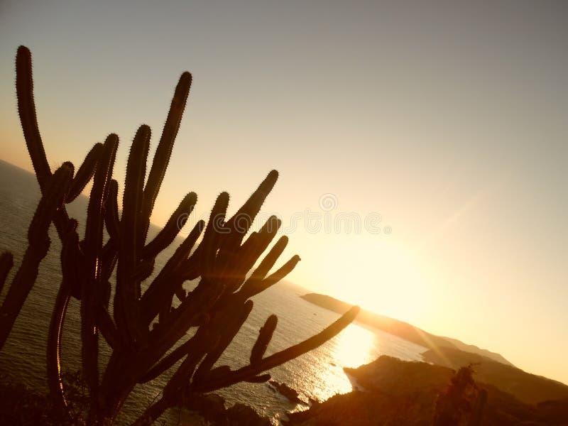 Zmierzch od losu angeles Entrega latarni morskiej, Huatulco, México fotografia royalty free
