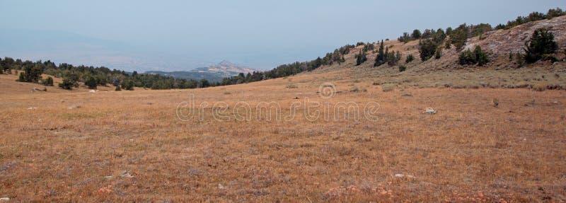 Zmierzch, półmrok nad Teacup jarem przegapia bighorn Krajowego Rekreacyjnego teren w Pryor górach w Montana/ obrazy royalty free