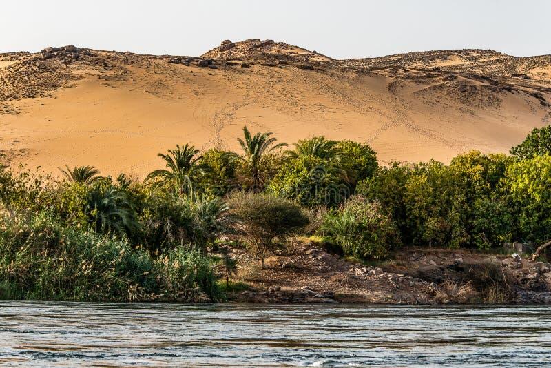 Zmierzch, piasek diuny na linii brzegowej Nil rzeczna część dzwonił Pierwszy kataraktę, Aswan Egipt zdjęcie stock