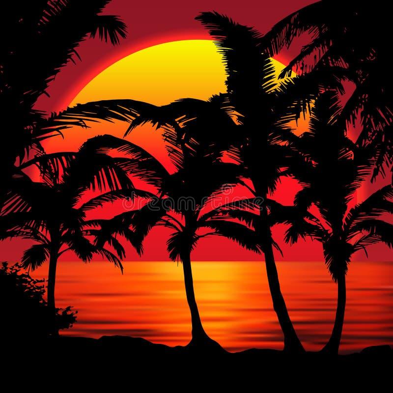 Zmierzch plaża z palmami Zmierzchu krajobraz z kolorowym zmierzchu nieba gradientem Czerwony słońce odbija w wodzie royalty ilustracja