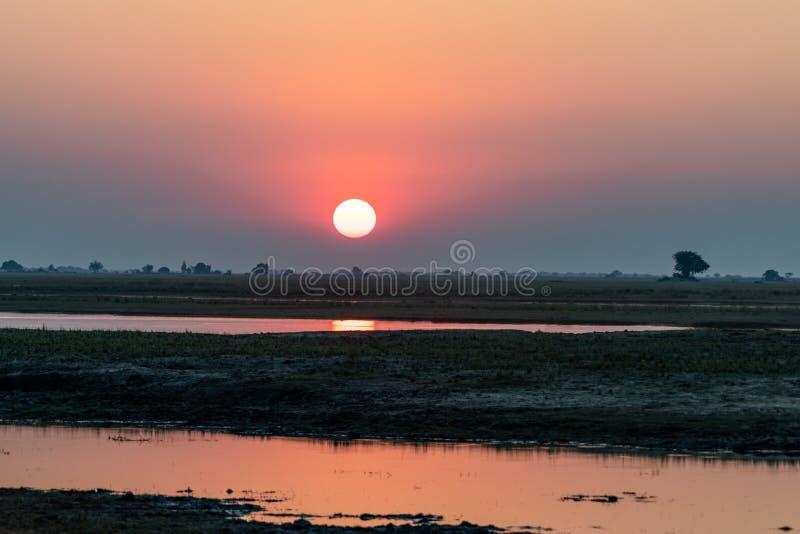 Zmierzch przy chobe rzeką w Botswana w Africa fotografia royalty free