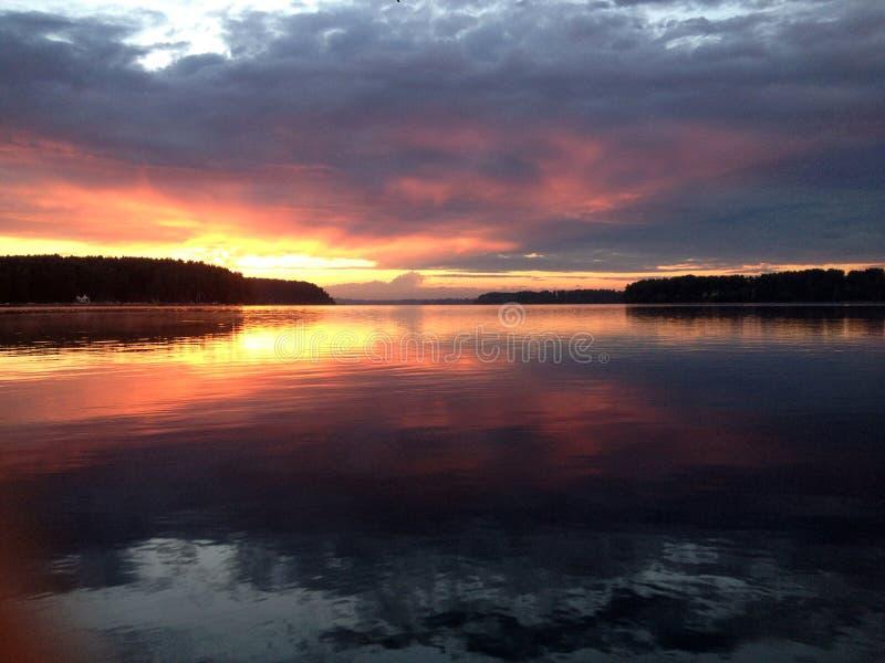 Zmierzch w lasowym jeziorze fotografia royalty free