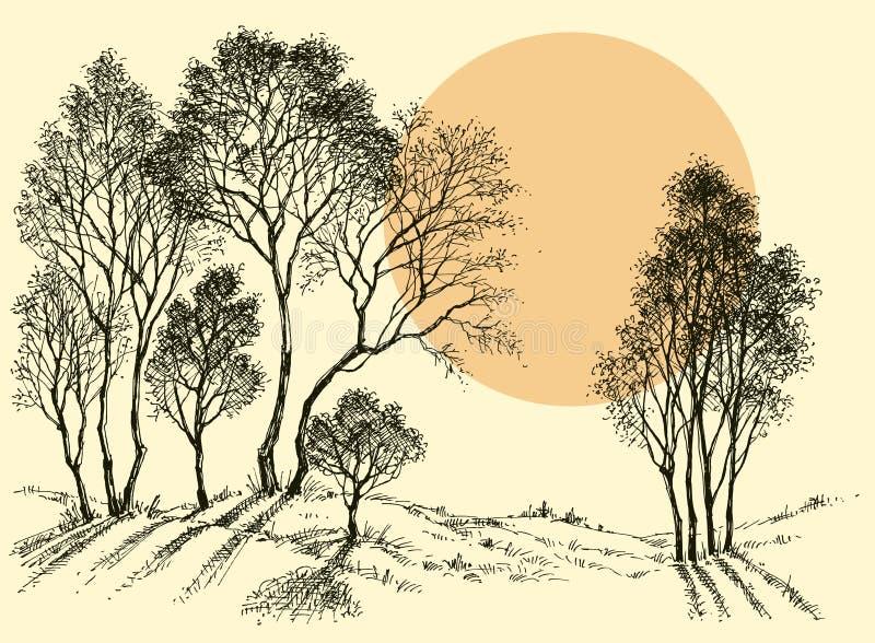 Zmierzch w lesie royalty ilustracja