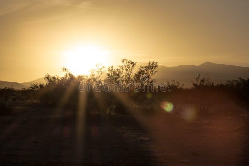 Zmierzch w pustyni - 2 zdjęcie royalty free