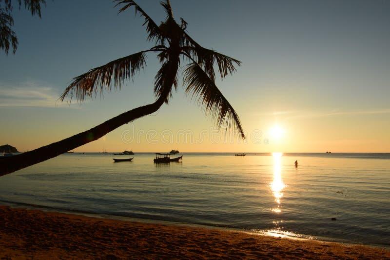 Zmierzch w Sairee plaży koh Tao Surat Thani prowincja Tajlandia obrazy royalty free