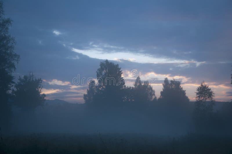 Zmierzch Wieczór mgły, mgły horroru mistick krajobraz/ obraz stock