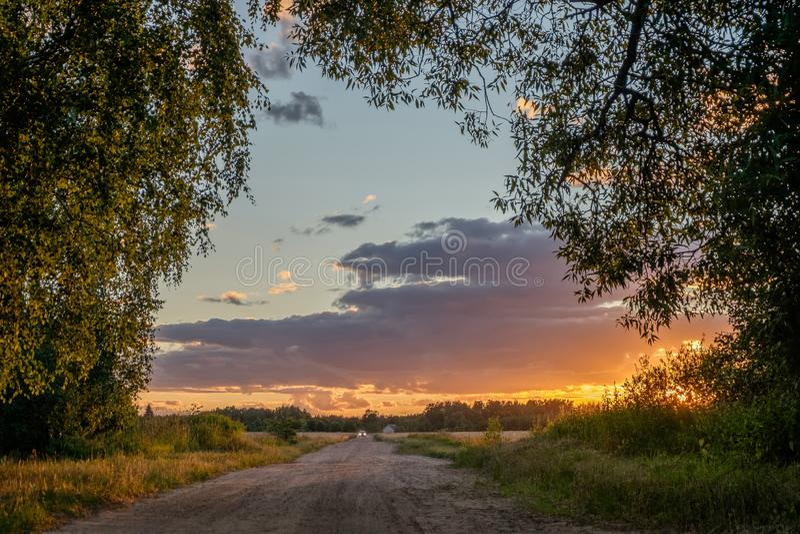 Zmierzchu drogowy widok przez drzew obrazy stock
