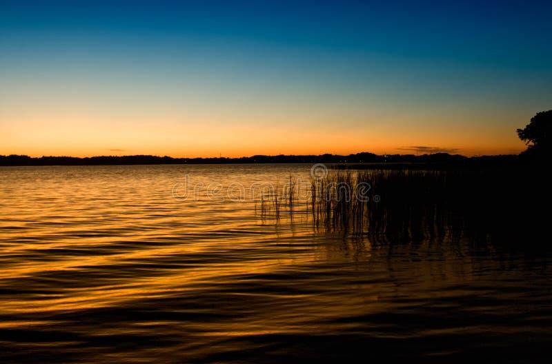 zmierzchu jeziorny tarpon obraz royalty free
