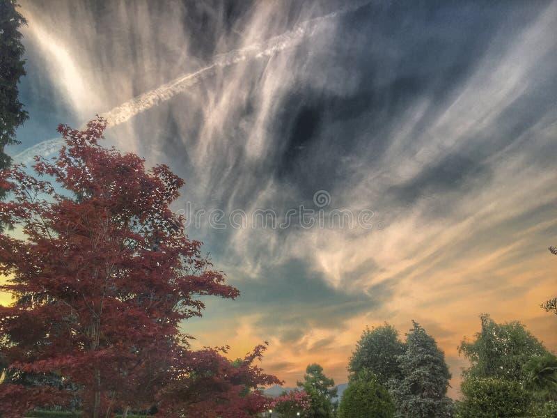 Zmierzchu niebo obrazy royalty free