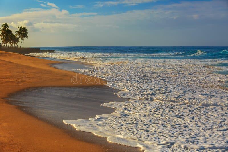 Zmierzchu oceanview, piaskowata plaża z biel pianą na nim obraz royalty free