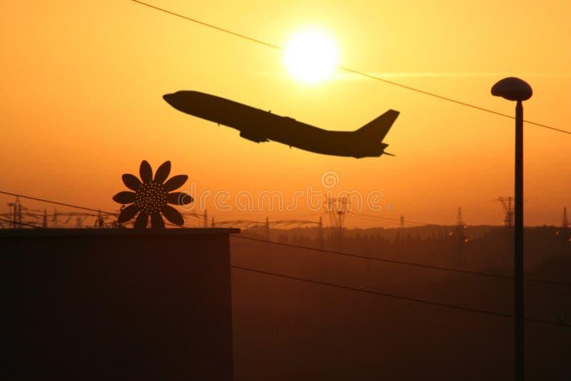 Zmierzchu przemysłowy Słonecznik zdjęcia stock