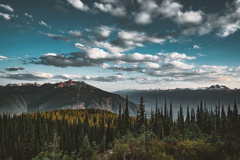 Zmierzchu widok od góry Revelstoke przez las z niebieskim niebem i chmurami brytyjski Canada Columbia zdjęcie stock