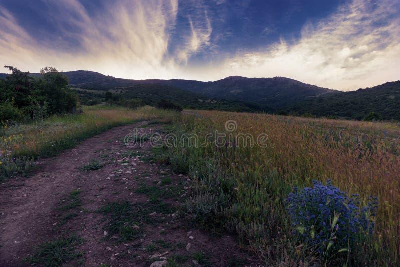 Zmierzchu wieczór w górach z drogą i polem fotografia royalty free