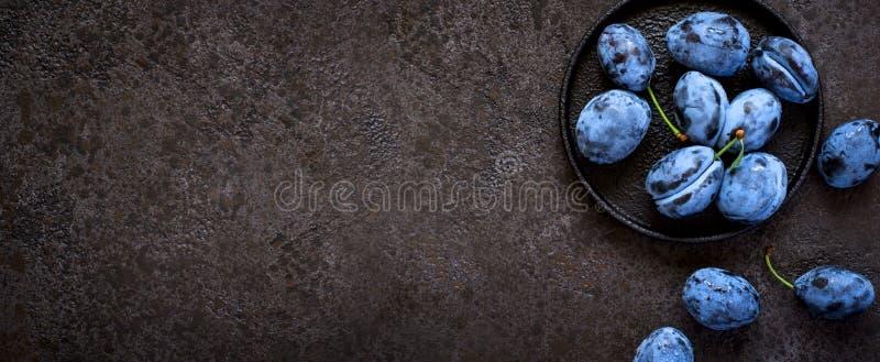 Zmrok - błękitne śliwki w obsady żelaza talerzu na czarnym tle, sztandar tęsk format obraz stock