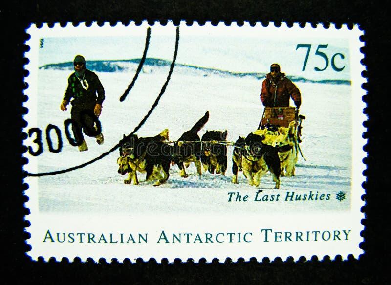 Znaczek drukujący w Australia pokazuje wizerunek ostatni husky, Australijski Antarktyczny terytorium na wartości przy 75 centem zdjęcia royalty free