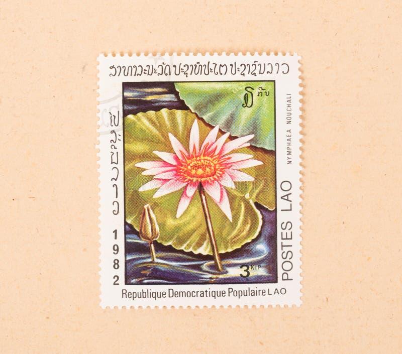 Znaczek drukujący w Laos pokazuje kwiatu około 1980, zdjęcia stock