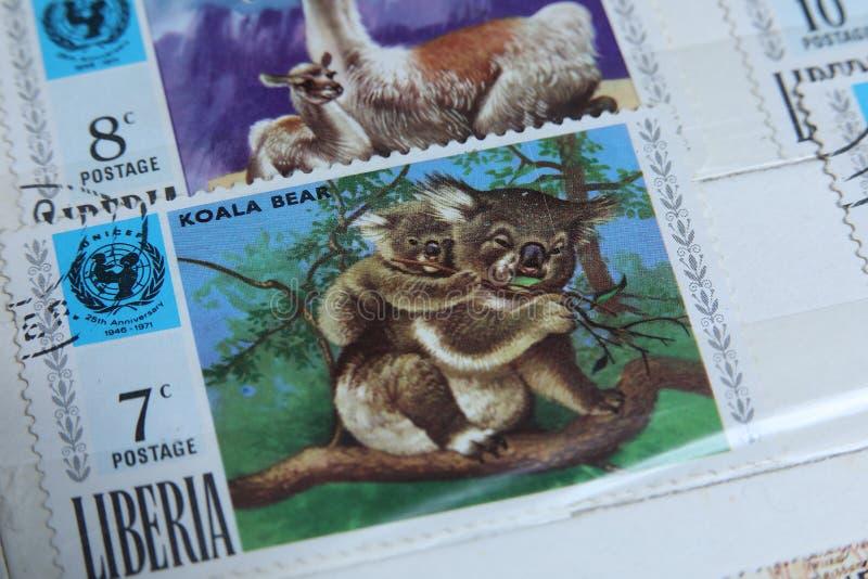 Znaczki pocztowi, Liberia dzikie zwierzęta, koala niedźwiedź zdjęcia royalty free
