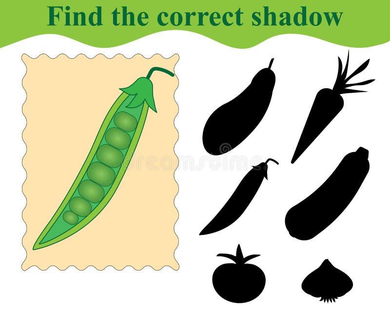 Znajduje poprawnego cień, edukacyjna gra dla dzieciaków tła zieleni odosobniony grochowy biel ilustracji