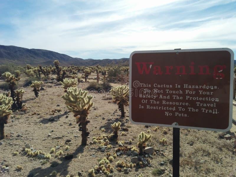 Znak ostrzegawczy dla kaktusa w Joshua drzewa lesie państwowym obraz royalty free
