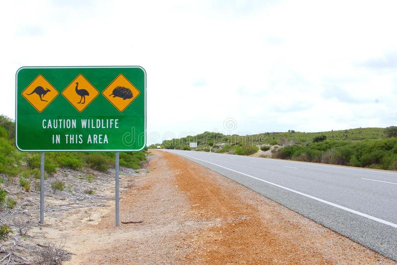 Znak ostrzegawczy dla krzyżować jeżatki, emu i kangury w Australia, zdjęcie stock